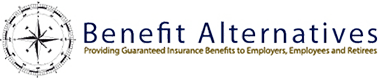 Benefit Alternatives Inc Logo